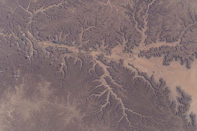 Dendritic Drainage Pattern Explained!