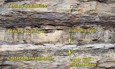 Cretaceous-Tertiary Boundary Layer