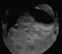 High Resolution Mosaic of Phobos